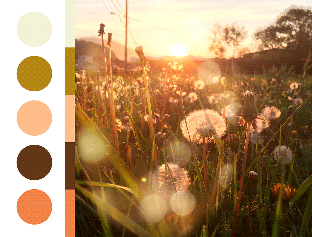 Zalazak sunca u Aranđelovcu, paleta boja sa fotografije