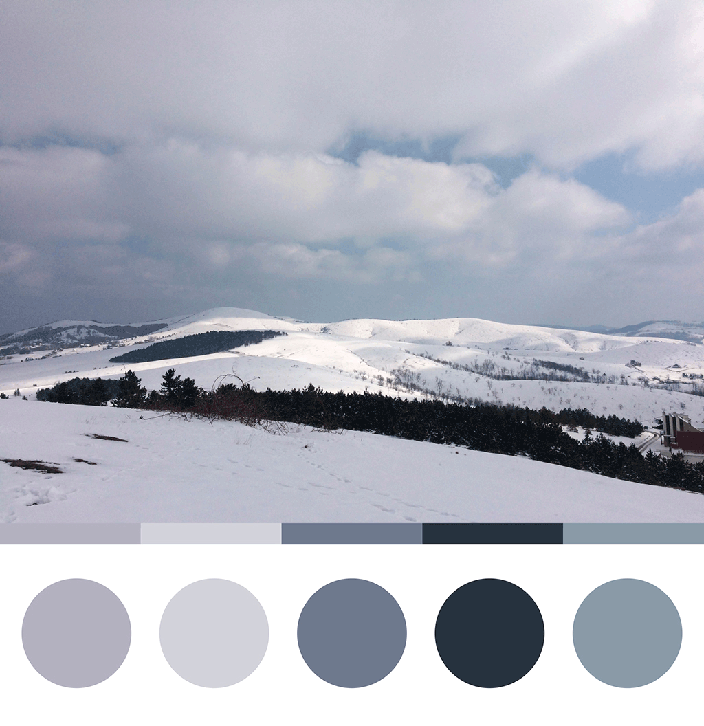 Zlatibor prekriven snegom, paleta boja sa fotografije